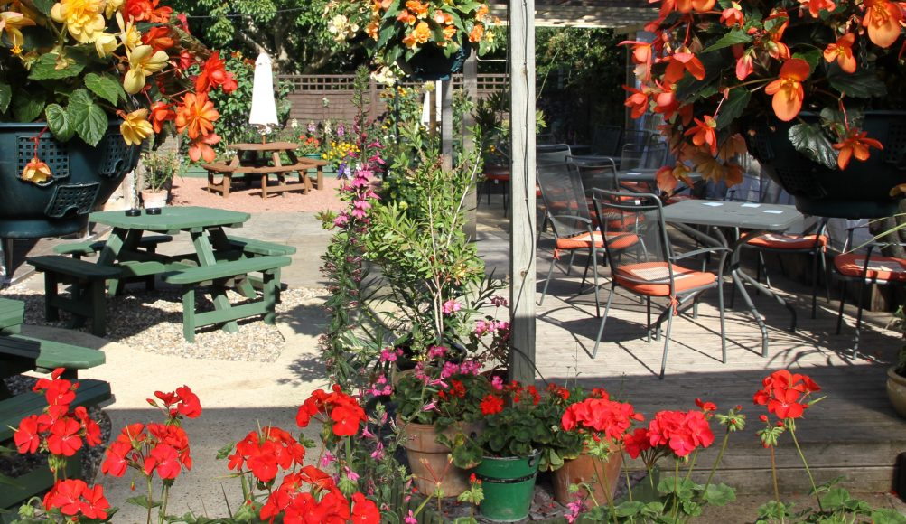 Pub Terrace and Garden in East anglia
